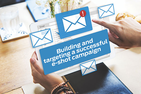 building-and-targeting-a-succesful-e-shot-campaign